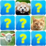 Memory Game: Animals 6.5 (Mod Unlimited Money)