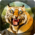 Forest Animal Hunting 2018 – 3D 1.2.6  (Mod Unlimited Money)