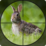 Rabbit Hunting Challenge 2019 – Shooting Games FPS 1.2 (Mod Unlimited Money)