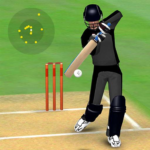 Smashing Cricket – a cricket game like none other 3.1.6 (Mod Unlimited Diamonds)