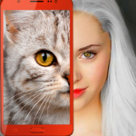 Kittens: what cat are you? prank 2.7 (Mod Unlimited Money)