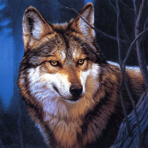 Wolf Jigsaw Puzzles 2.10.0  (Mod Unlimited Money)