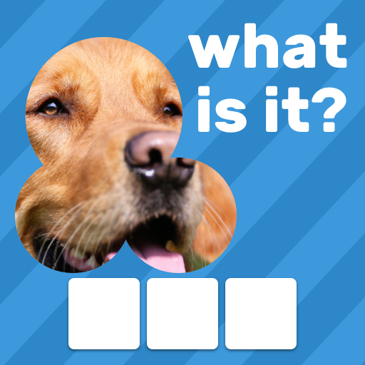 Zoom Quiz: Close Up Pics Game, Guess the Word 3.5.2 (Mod Skip a Level)