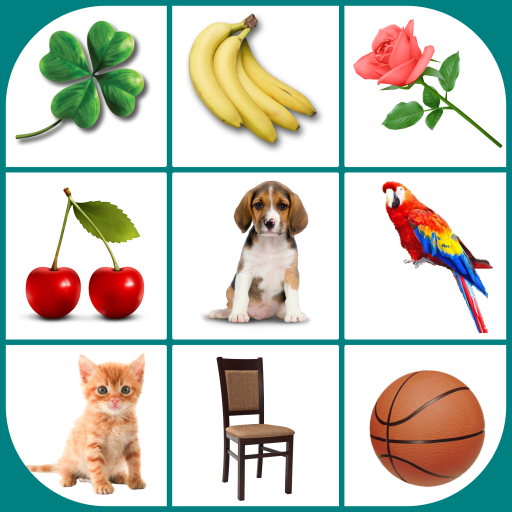 Brain game. Picture Match.  2.4.9 (Mod Ads removal)