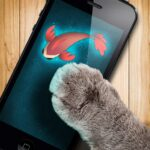 Fish game toy for cats 1.31 (Mod)