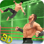 Tag Team Wrestling Superstars Fight: Hell In Cell  1.1.3 (Mod Unlimited Money)